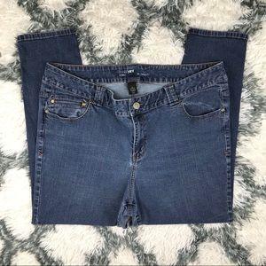 Lane Bryant Women's Skinny Jeans Size 24 Plus Blue